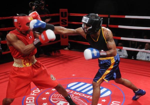 boxers-652385_1920