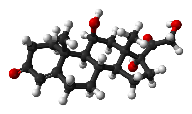 Cortisol-3D-balls.png