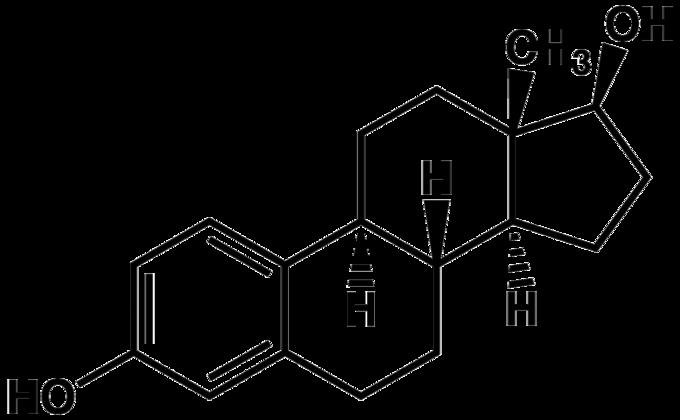 estradiol2