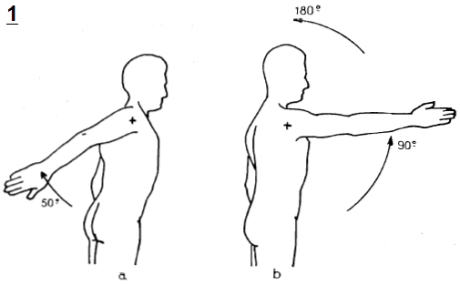 Figura n.1