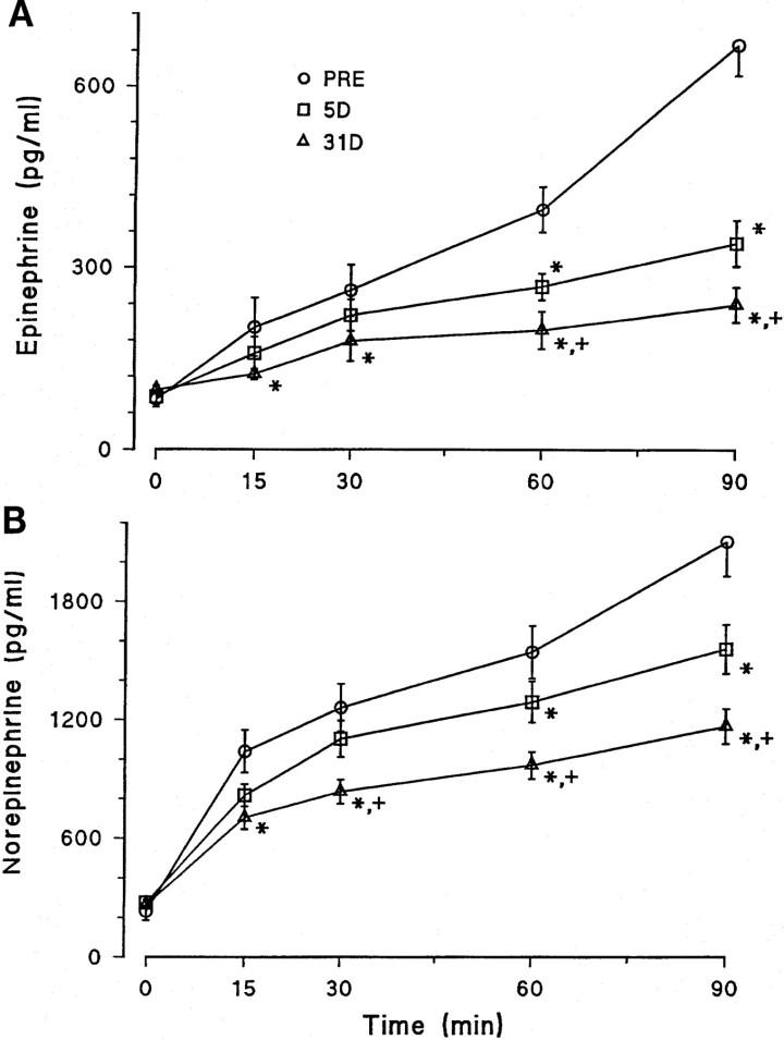 Catecolamine ed eserciziofisico