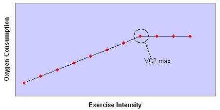 VO2 max: un breveapprofondimento